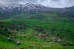 Schneebedeckte Berge und blühende Bäume und Sträucher