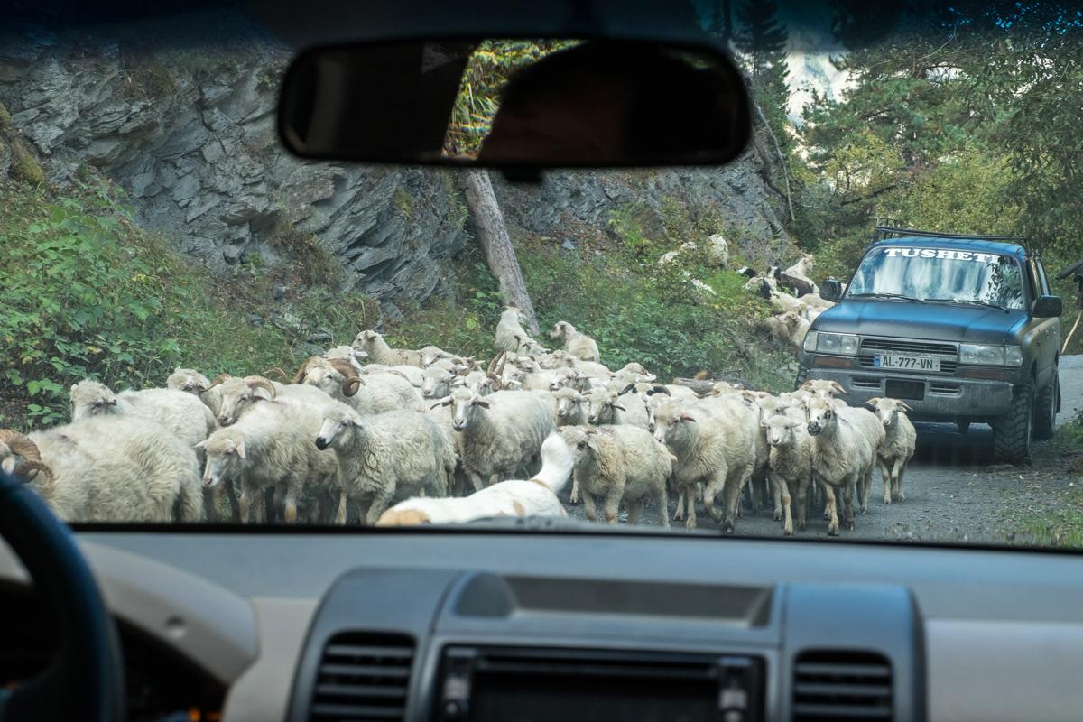 ...und es herrscht reger Verkehr