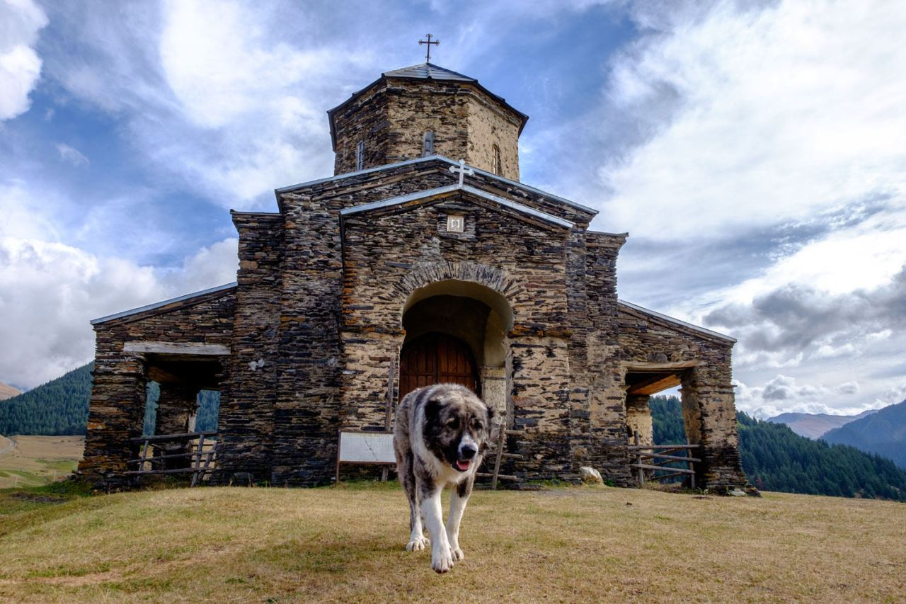 Die Kirche in Shenako... bewacht von einem Hund