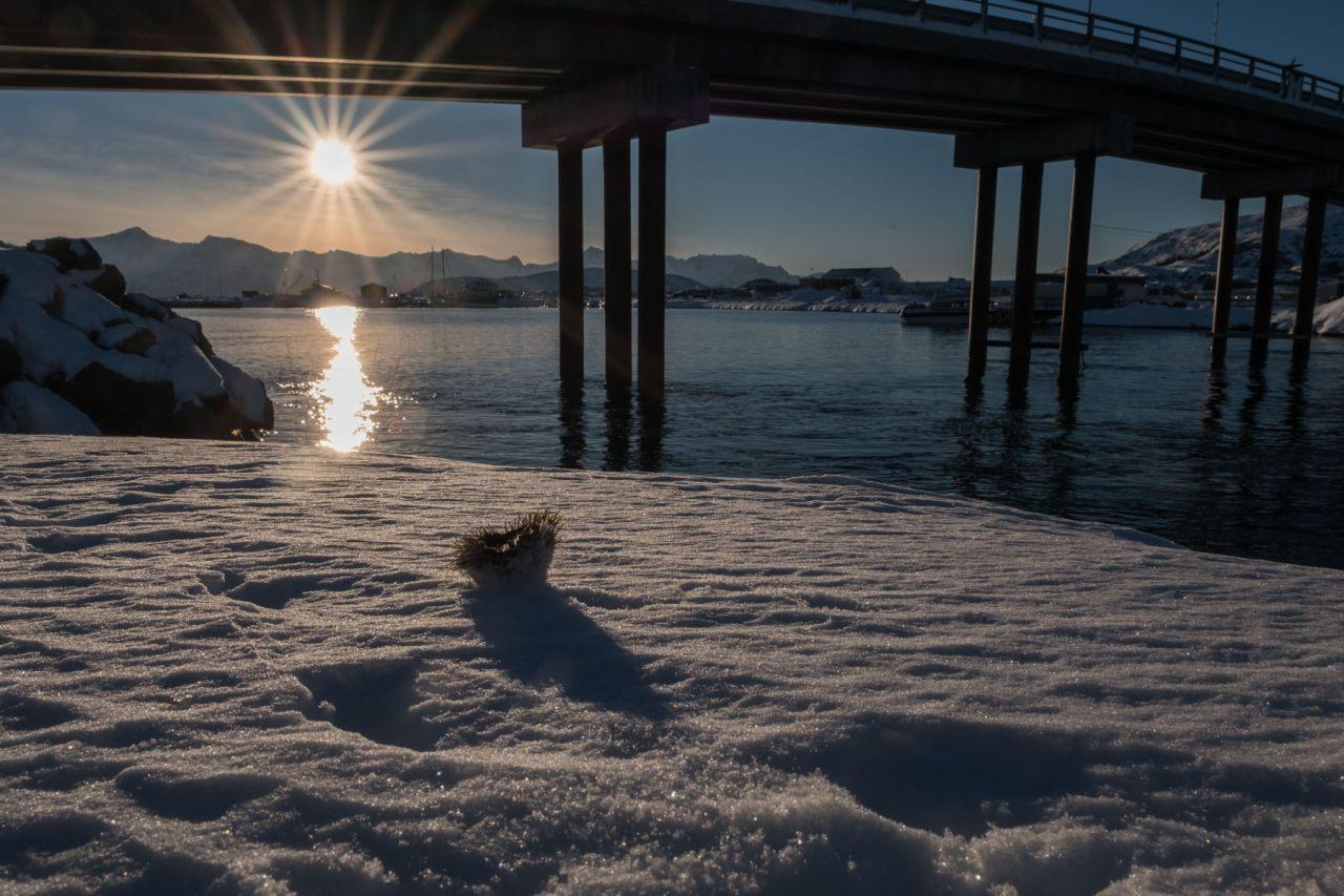 28.2.2017 In Sommarøy
