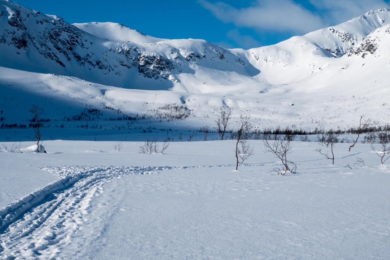 29.2. – 5.3.2017 Sommarøy, Tromsø undUmgebung