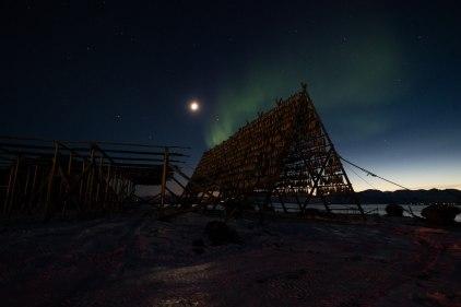 Mond, blaue Stunde und trotzdem ist das Nordlicht klar zu sehen, auch für mich das erste Mal