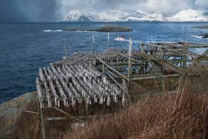 Lofoten komplett in einen Bild - Sonne, Schneetreiben, Wind, Trockenfisch