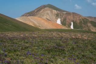 Eine tolle Landschaft... im Großen..