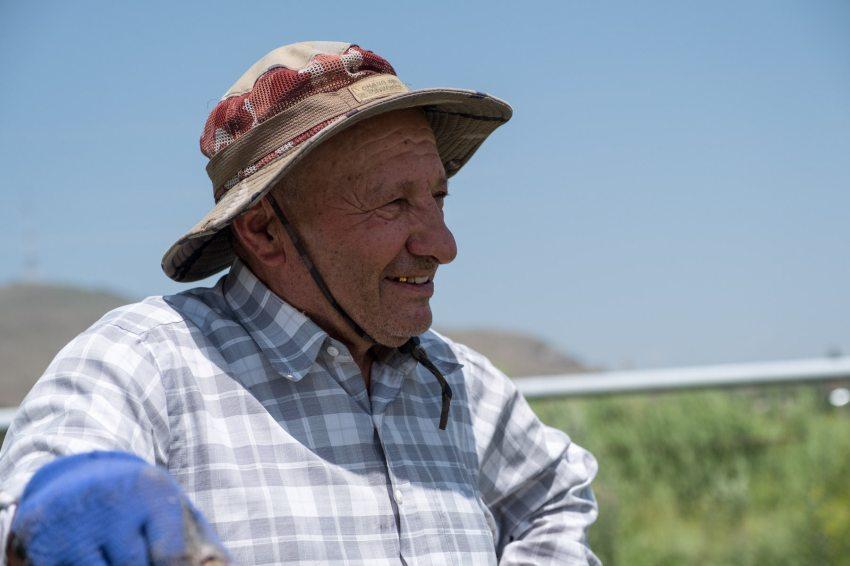 Ein fröhlicher pensionierter Arzt bei der Gartenarbeit