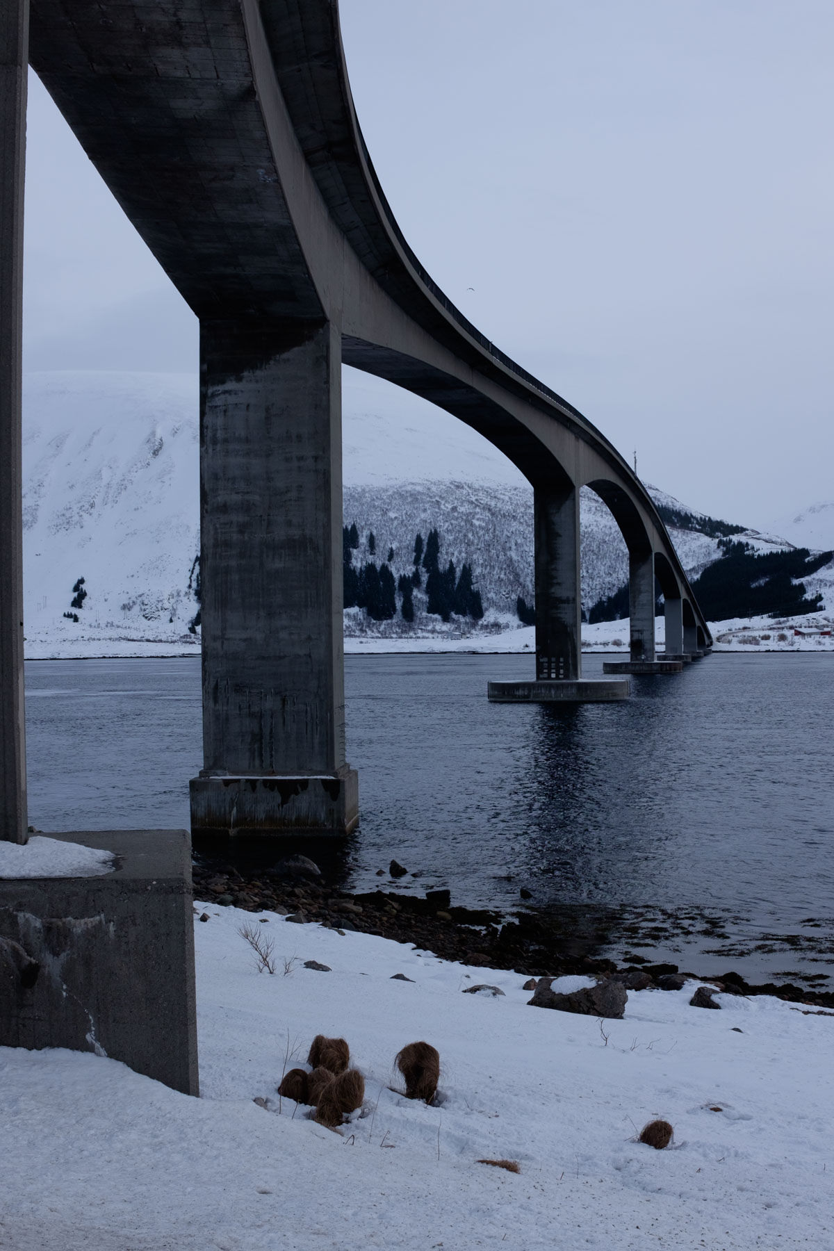 Brücke über den Gimsøystraumet